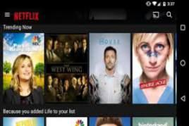 Video Downloader with embedded FLV Player